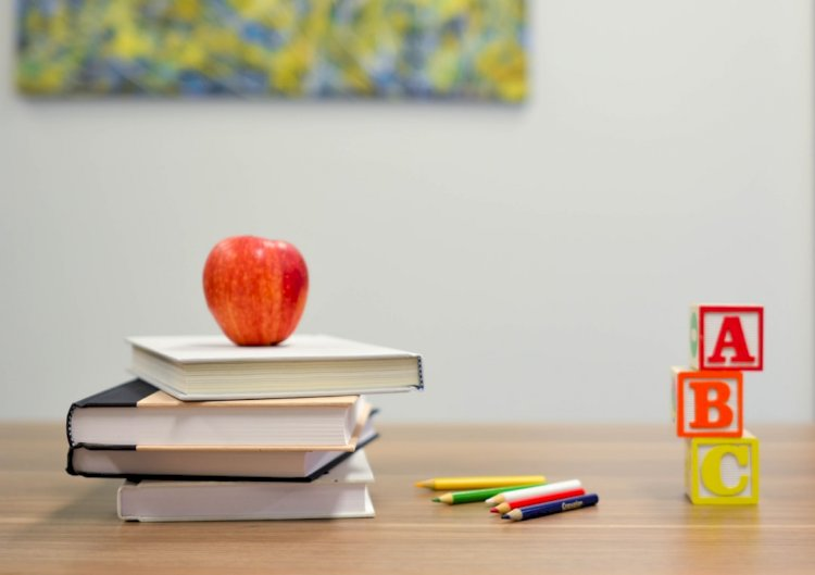 3 Easy Steps To Homeschooling Success
